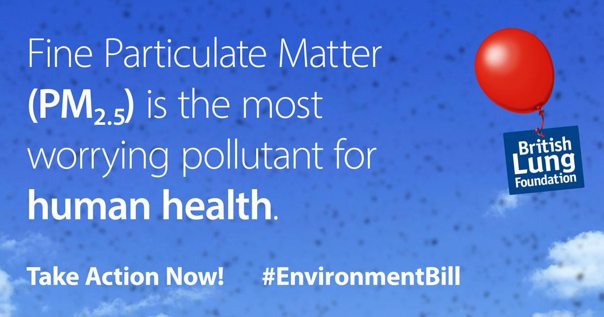 Fine Particulate Matter is the most worrying pollution for human health