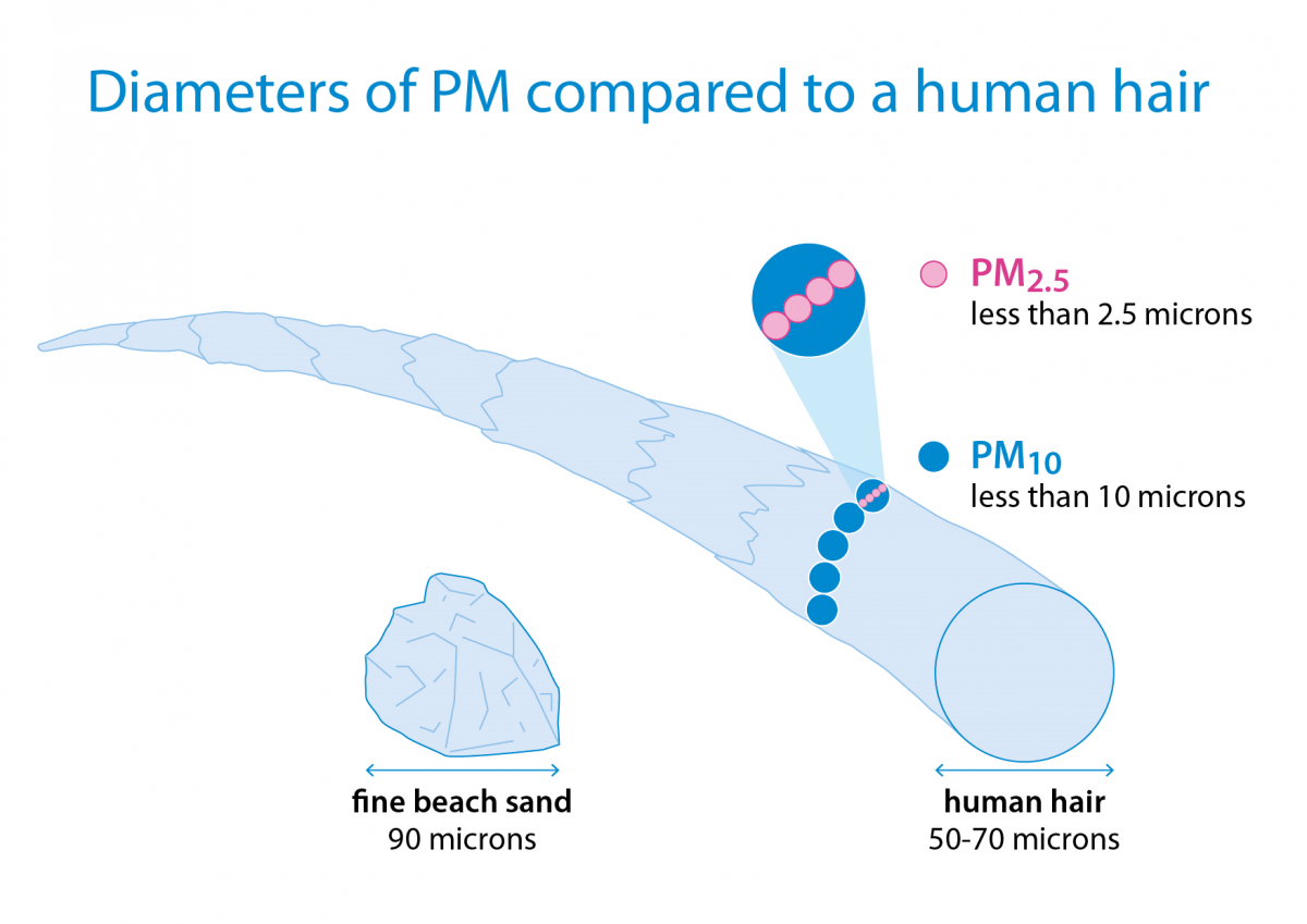 Diameters of particulate matter compared to a human hair
