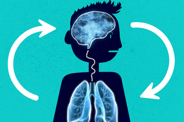 The brain and lungs are visible in a child's silhouette. Two arrows point in a semi-circular direction. One points from the brain to the lungs, the other from the lungs to the brains, to indicate their link.
