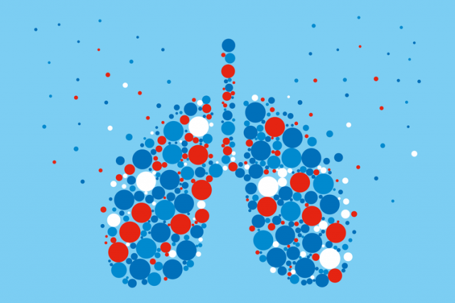 BLF lungs