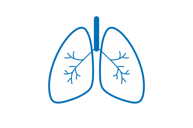 lungs blue outline infographic
