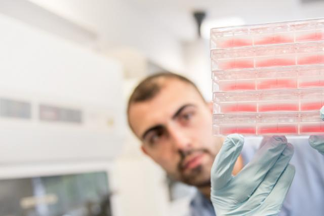 researchers looking at results