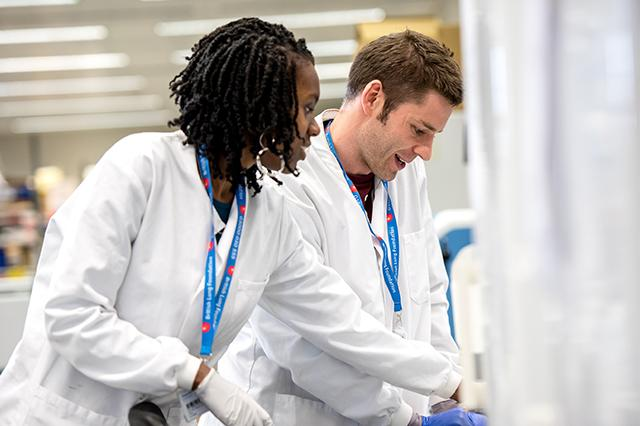 researchers working together